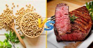 سویا و گوشت - فیتنس ساز